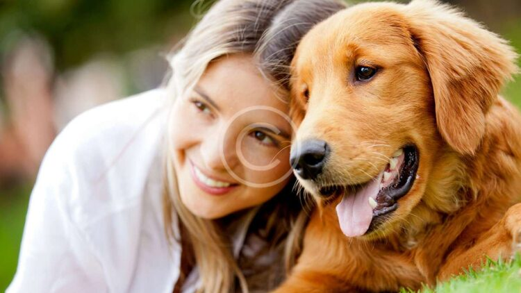 Are Two Pets Better Than One?
